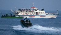 Read more: German Jews 'inundated' with requests to join new Gaza aid flotilla